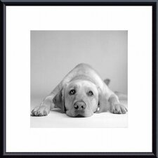 Tally Metal Framed Art Print