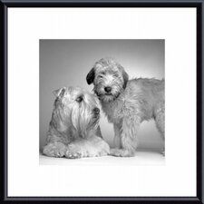 Ruff and Daisy Metal Framed Art Print