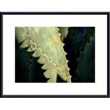 <strong>Barewalls</strong> Agave Thorns Metal Framed Art Print