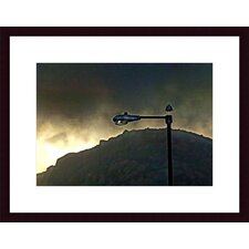 <strong>Barewalls</strong> Bird, Lamp and Morro Rock Wood Framed Art Print