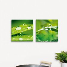 <strong>Platin Art</strong> Deco Glass After the Rain Wall Decor (Set of 2)