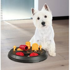 Flip Board Dog Activity Game