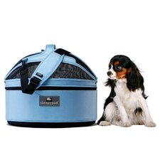 Mobile Pet Bed/Carrier in Sky Blue