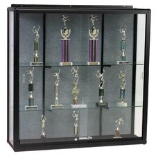 "Display Cases, Wall Mount, 48""x16""x48"", Oak"