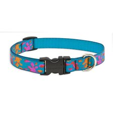 "Wet Paint 3/4"" Adjustable Dog Collar"