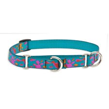 "Wet Paint 3/4"" Adjustable Dog Combo Collar"