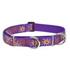 "Sunny Days 1"" Adjustable Dog Combo Collar"