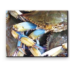 I Sea Life Blue Crab Canvas Art