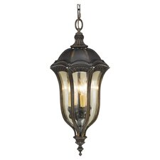 Baton Rouge 4 Light Hanging Lantern in Walnut