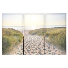 "Scenic ""Beach Walk"" Canvas Art"