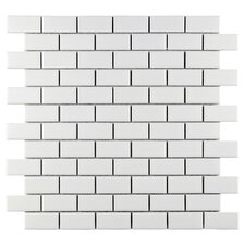 Retro Porcelain Subway Mosaic Tile Sheet in White