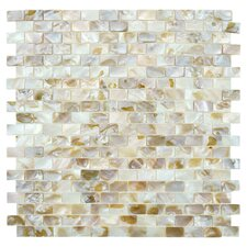 Shore Natural Shell Mosaic Tile in Natural