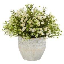 Mixed Mini Daisy Silk Plant