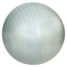 "22"" Professional Exercise Ball in Blue Grey"