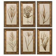 Wheat Framed Grass Print Art by Grace Feyock