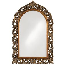 Orleans Mirror in Antique Bronze