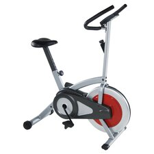 Flywheel Upright Bike in Silver