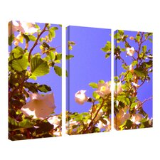 "<strong>Trademark Global</strong> Flowering Tree II by Amy Vangsgard, 3 Panel Wall Art - 32"" x  42"""
