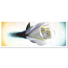 "<strong>Trademark Global</strong> Lovely Rose by Roderick Stevens, Canvas Art - 24"" x 48"""