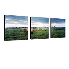 Kentucky Sunrise by Preston Canvas Art (Set of 3)