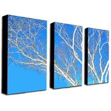 <strong>Trademark Global</strong> Spring Tree by Kathie McCurdy Canvas Art (Set of 3)