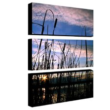 Dreams by Cat Eyes 3 Piece Photographic Print on Canvas Set
