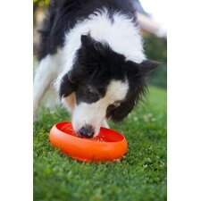 Throw Water Bowl