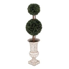 Double Grass Ball Tree