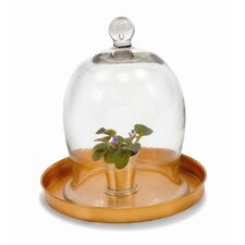 <strong>ACHLA</strong> Small Bell Jar