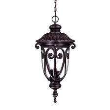 <strong>Acclaim Lighting</strong> Naples 3 Light Outdoor Hanging Lantern