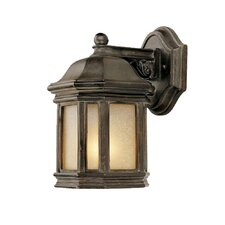 <strong>Acclaim Lighting</strong> Florence 1 Light Wall Lantern