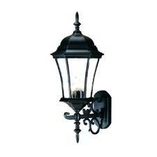 <strong>Acclaim Lighting</strong> Brynmawr 3 Light Wall Lantern