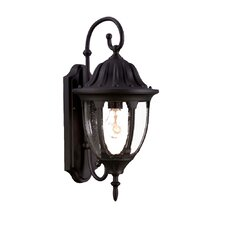 <strong>Acclaim Lighting</strong> Suffolk 1 Light Wall Lantern