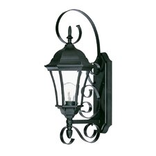 <strong>Acclaim Lighting</strong> New Orleans 1 Light Wall Lantern