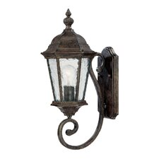 <strong>Acclaim Lighting</strong> Telfair 1 Light Wall Lantern