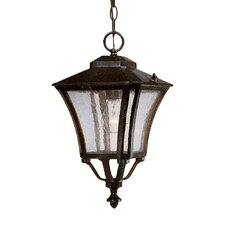Tuscan 1 Light Outdoor Hanging Lantern