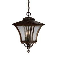 <strong>Acclaim Lighting</strong> Tuscan 3 Light Outdoor Hanging Lantern