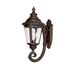<strong>Acclaim Lighting</strong> Surrey 1 Light Wall Lantern