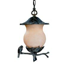 Avian 2 Light Outdoor Hanging Lantern