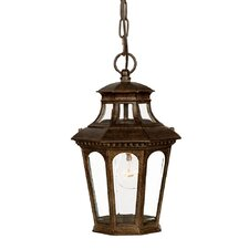 <strong>Acclaim Lighting</strong> Newcastle 1 Light Outdoor Hanging Lantern