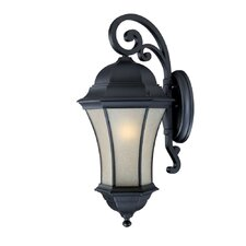 <strong>Acclaim Lighting</strong> Waverly ES 1 Light Wall Lantern