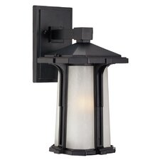 Illuma 1 Light Outdoor Wall Sconce