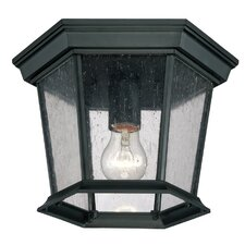 Illuma 1 Light Outdoor Flush Mount