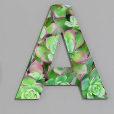 Lisa Argyropoulos Succulents Color Decorative Letters