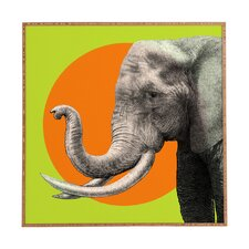 Wild 6 by Garima Dhawan Framed Graphic Art Plaque