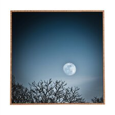 Moon by Bird Wanna Whistle Framed Photographic Print Plaque