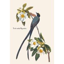 Fork-Tailed Flycatcher by John James Audubon Graphic Art on Canvas