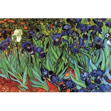 Irises by Vincent Van Gogh Painting Print on Canvas