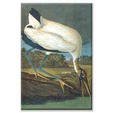 <strong>Buyenlarge</strong> Wood Stork Canvas Wall Art