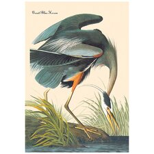 Great Blue Heron by John James Audubon Graphic Art on Canvas